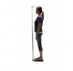 Height Measuring Rod-Adulthr